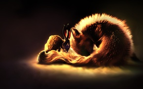 Picture rabbit, Fox, by Amphispiza
