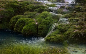 Picture fantasy, river, nature