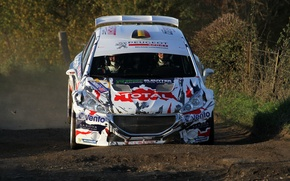 Picture Peugeot, Rally, 208, T16, Landing
