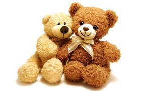 Picture toy, bear, pair, plush, toy, bear, cute, Teddy