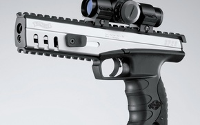 Wallpaper sight, Walter, Walther SP22 M3 Target Rimfire Pistol, gun