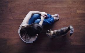 Picture cat, cat, girl, background, widescreen, Wallpaper, feet, mood, jeans, brunette, floor, wallpaper, sitting, widescreen, background, …