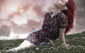 Picture girl, flowers, mood, butterfly, chamomile, meadow