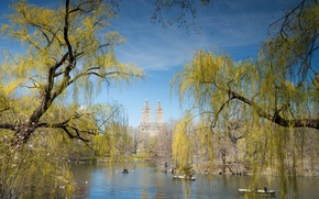 Picture the sky, trees, pond, people, boat, home, spring, New York, USA, Central Park