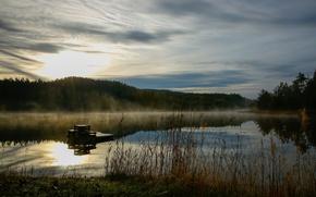 Picture fog, lake, dawn, morning, haze