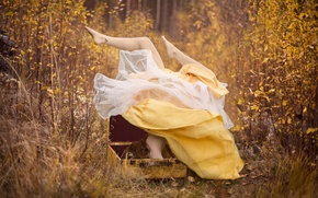 Picture autumn, forest, girl, dress, suitcase, feet up