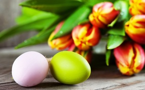 Picture eggs, Easter, tulips, flowers, tulips, Easter