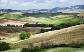 Picture landscape, nature, hills, field, Italy, Tuscany