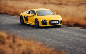 Picture speed, V10, yellow, speed, car, auto, Audi, Audi