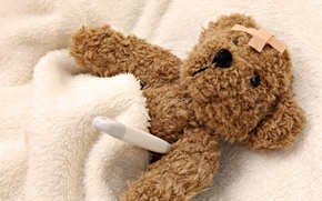 Picture toy, bear, blanket, thermometer, disease, soft, Band-aid