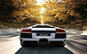 Picture road, autumn, the sun, trees, speed, Lamborghini, white, murcielago, lp640, Lamborghini, murciélago