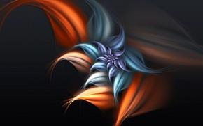 Picture flower, petals, undertones, Wallpaper, fantasy