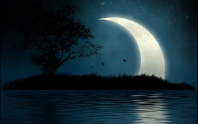 Picture water, night, island, The moon