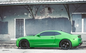 Picture black, green, profile, green, wheels, Chevrolet, drives, black, camaro, chevrolet, Camaro, tinted