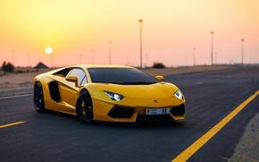 Picture sport, Aventador, Lamborghini, Aventador, car