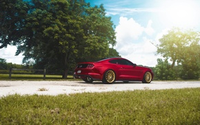 Picture Mustang, Ford, Muscle, Light, Red, Car, Sun, Rear, 2015, Brakes