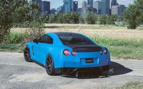 Picture road, asphalt, blue, nissan, rear view, trees, Nissan, blue, gtr, gtr, r35, shadow, roas