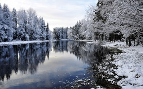 Picture winter, snow, trees, river, landscape, winter, snow