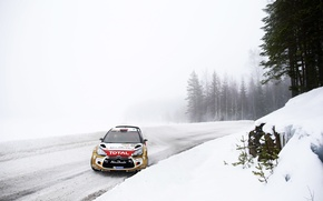 Picture Winter, Auto, Snow, Forest, Sport, Machine, Skid, Citroen, DS3, WRC, Rally, Rally, Cold, The front, …