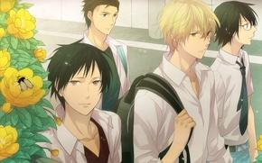 Picture look, flowers, the city, bee, street, anime, guy, Shizuo, Of izaya, Durarara!, Durarara, Heiwajima, Izaya, ...