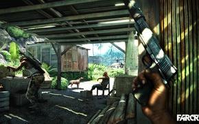 Picture Dog, Far Cry 3, Picolet, Mercenaries
