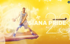 Picture Sport, Basketball, NBA, New Orleans, New Orleans, Pelicans, Anthony Davis, Anthony Davis, Pelicans