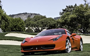 Picture field, trees, red, Ferrari, red, grass, Ferrari, 458, sky, Italy, front, tree, 458 italia