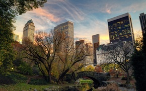Picture trees, bridge, nature, the city, river, building, home, New York, skyscrapers, the evening, USA, USA, …