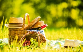 Picture greens, grass, wine, basket, glade, bottle, hat, bread, grapes, picnic, nature, bokeh