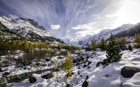 Picture Autumn vs. Winter, Pontresina, Val Morteratsch