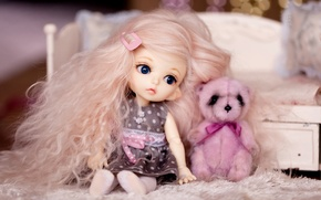 Picture hair, toys, doll, girl, bear
