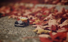 Picture machine, autumn, leaves, toy