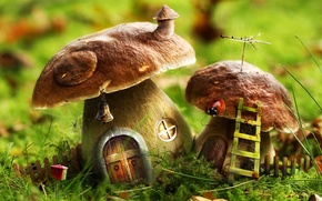 Picture green, house, mushrooms, ladder, 156