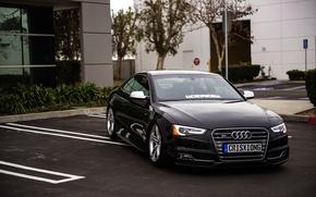 Picture Audi, Audi, black, black, front