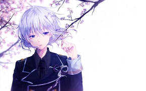 Picture flowers, anime, Sakura, art, guy, mokoppe, touken ranbu, honebami toshiro