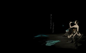 Picture butterfly, anime, art, pair, Hashi