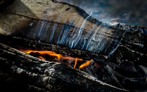 Picture macro, fire, logs