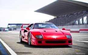 Picture Red, Auto, Machine, Ferrari, Ferrari, F40, Supercar, Track, Supercar, The front, Ferrari F40, F 40, …