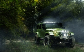 Picture forest, green, Jeep