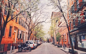 Picture trees, bike, street, New York, motorcycle, cars, United States