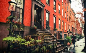 Wallpaper dog, the sidewalk, Brooklyn, New York, Brownstones, United States, lamppost, woman