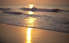 Picture sea, wave, beach, dawn, shore