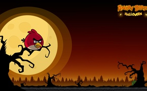 Picture moon, halloween, sunset, Angry birds