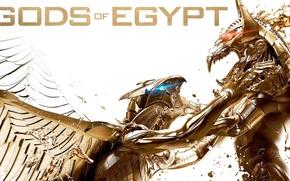 Picture cinema, fox, wings, blue eyes, Egypt, power, red eyes, fight, movie, Gerard Butler, battle, Set, …