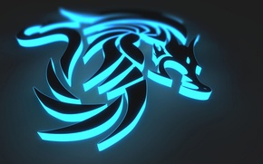 Picture rendering, dragon