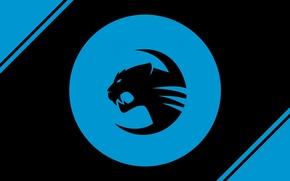 Picture logo, blue, roccat team