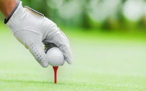 Wallpaper sport, golf, ball