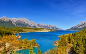 Picture autumn, forest, the sky, trees, mountains, lake