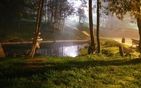 Picture landscape, nature, pond, Park