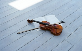 Picture violin, bow, violin, string musical instrument, string musical instrument, bow